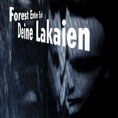 Deine Lakaien - Forest Enter Exit Artwork by:  Artwork by Stig Harder